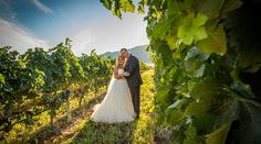Our list of ALL the Okanagan's Wedding Photographers - Top Okanagan Wedding Photographers in Kelowna, Vernon, Penticton, Kamloops and beyond! Wedding Planning Tips, Photographers, Wedding Dresses, Bride Dresses, Bridal Gowns, Weeding Dresses, Wedding Dressses, Bridal Dresses