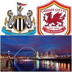 Newcastle v Cardiff  3rd May - 5th May 2014.  Birthday Weekend!