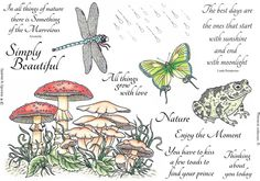 Stamp Set 467 - Nature