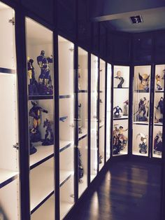 25 Best Figure Display Room Images In