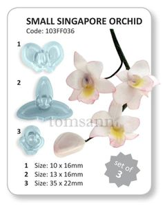 JEM Small Singapore Orchid cutters #103FF036 gum paste cake decorating fondant #JEM