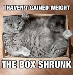 The box shrunk!