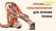 Это упражнение обладает прекрасным терапевтическим воздействием на печень! Yoga Sequences, Yoga Poses, Yoga Fitness, Health Fitness, Corpus, Cycling Workout, Bike Workouts, Swimming Workouts, Swimming Tips