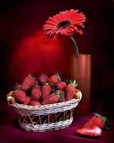 good morning images with love quotes Very Good Morning Images, Good Morning Coffee, Happy Morning, Good Morning Picture, Good Morning Flowers, Good Morning Messages, Good Morning Good Night, Morning Pictures, Good Morning Wishes