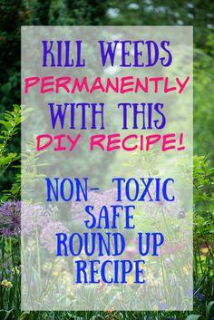 How to Permanently Kill Grass and Weeds with Salt, Vinegar and Dawn - Diy weed killer - Garden Yard Ideas, Diy Garden, Lawn And Garden, Garden Landscaping, Shade Garden, Garden Cart, Landscaping Tips, Balcony Garden, Organic Gardening