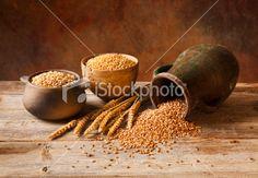Naturmort with Anatolian type wheats in old Anatolian hand-cooked earthenware pots,