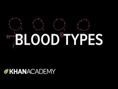 Blood types   Hematologic system introduction   Advanced hematologic system physiology   Health and medicine   Khan Academy