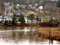 Aberdeen, WA : The Muddy Banks Of The Wishkah
