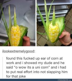 awesome 30 Clever Memes That Are Smartly Funny Tumblr Puns, Funny Tumblr Posts, Haha, Bad Puns, Stupid Funny Memes, Fuuny Memes, True Memes, Funniest Memes, Really Funny