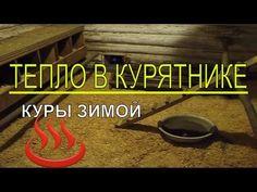 Почему в КУРЯТНИКЕ ЗИМОЙ ТЕПЛО ? / Куры несушки зимой / Содержание кур / Тёплый курятник - YouTube