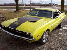 Your Favorite American Muscle Cars >> www.musclecarshq.com