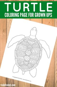 cute coloring pages of turtles.html