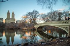 Central Park by Edward Anthony Photography @ed_anthony_ | newyork newyorkcity newyorkcityfeelings nyc brooklyn queens the bronx staten island manhattan