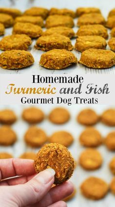 Homemade Dog Food Turmeric is an amazing herb. It is called the spice of life and at first glance it would appear to be almost anti-everything; to add to its awesomeness it is also the most potent natural anti-inflammatory. Gourmet Dog Treats, Diy Dog Treats, Healthy Dog Treats, Doggie Treats, Homemade Dog Cookies, Homemade Dog Food, Homemade Cakes, Dog Biscuit Recipes, Dog Treat Recipes