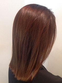 40 Unique Ways to Make Your Chestnut Brown Hair Pop medium length straight chestnut hair Golden Brown Hair, Brown Blonde Hair, Brunette Hair, Reddish Brown Hair, Hair Color Auburn, Brown Hair Colors, Chesnut Hair Color, Medium Auburn Hair, Brown Auburn Hair