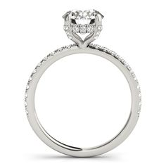 White Gold Round Diamond Engagement Ring with Scalloped Single Row Band ct. Timeless Engagement Ring, Engagement Rings Sale, Unique Diamond Engagement Rings, Halo Engagement, Engagement Ring Settings, 2 Carat Diamond Ring, Diamond Rings, Halo Diamond, Moissanite Diamonds