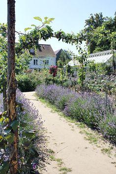 Magic Garden, Dream Garden, Garden Paths, Garden Beds, Landscape Design, Garden Design, Urban Farming, Garden Inspiration, Beautiful Gardens