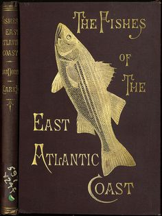 The Fishes of the East Atlantic Coast That Are Caught with Hook and Line by State Library of Massachusetts, via Flickr