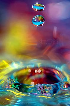 Drops in lovely hues                                                       …