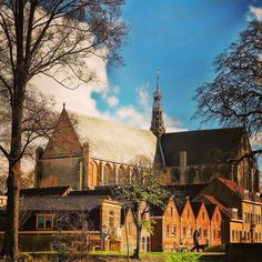 Alkmaar (Noord-Holland) - St. Laurens Church / St. Laurens Kirche / Église St.-Laurens