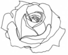 How to draw a rose #2
