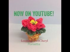 Rainbow Loom Poinsettia With Flower Pot - Looming WithCheryl. Christmas / Xmas/ winter/ Holiday. Tutorial is Now on YouTube! charms / figures / gomitas / gomas. Please Subscribe ❤️❤ m.youtube.com/user/LoomingWithCheryl