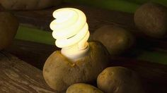 Potato Power: See How potatoes Could Get You Off The Grid