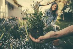 Before choosing the plants for your front yard, you need to prepare your yard first. So, we have gathered ten tips for front yard garden preparation. Benefits Of Gardening, Organic Gardening, Gardening Tips, Vegetable Gardening, Container Gardening, Tower Garden, Olive Garden, Garden Maintenance, Practice Gratitude