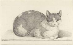 Zittende kat, naar rechts, Jean Bernard, 1798