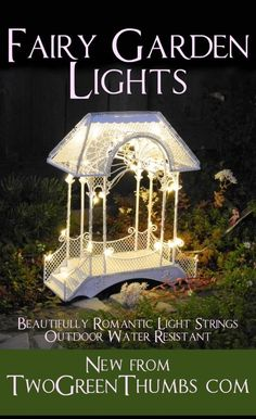 Lights for the miniature garden or fairy garden are water resistant and have a timer too!