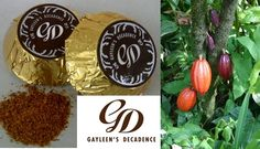 Gayleen's Decadence: A divinely inspired new flavour Chilli-caramel. Dairy-free, Sugar-free, all natural no artificial preservatives, colourants or flavourants. Luxury Chocolate, New Flavour, Chocolates, Preserves, Sugar Free, Dairy Free, Caramel, Christmas Bulbs, Sweets