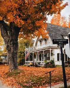 Orange leaves, Strawberry Hill, and Autumn Day Autumn Cozy, Fall Winter, Autumn Aesthetic, Seasons Of The Year, Autumn Inspiration, Travel Inspiration, My New Room, Fall Season, Belle Photo