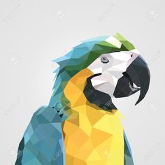 Illustration of abstract colorful low polygon macaw parrot head. vector art, clipart and stock vectors. Geometric Origami, Geometric Art, Art And Illustration, Vector Illustrations, Parrot Drawing, Pop Art, Monochromatic Art, Polygon Art, Vector Art