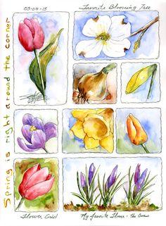 susan bronsak watercolors and sketching: Spring Around the Corner