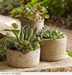 http://obrazkowo.com/i/przeczytaj-teraz-jak-zrobic-donice-z-betonu-pRUpHof.jpg