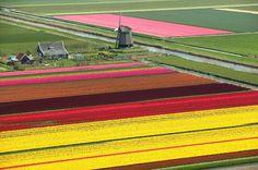 Anna Paulowna North Holland, Netherlands - hendrik48/Getty Images