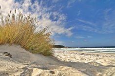 Discover the world through photos. Tasmania, My Dream Came True, Peaceful Places, Beach Scenes, East Coast, Dream Big, New Zealand, Seaside, Waves