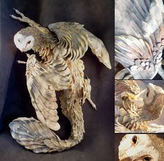 I wanted to see if there was such a thing as an owl dragon hybrid. Google is…