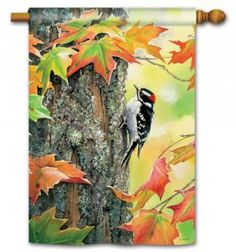 Magnet Works House Flag - Woodpecker