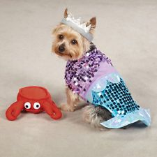 casual canine glim mermaid dog costume small purple gives pet an under the sea look with this enchanting glim mermaid costume