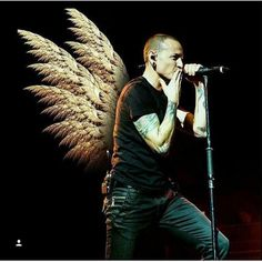 Beautiful Angel. Until we can hear your voice again...