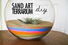 after researching and finding out there were different kind of terrariums i could make i read about the sand terrariums. they look best with a cactus inside to create a sort of desert-y feel! i loved the look of it and made me think of making sand art as a little kid. i was inspired! i had SO much…