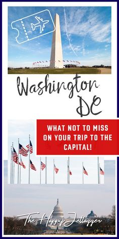 Visting Obama at the White House and the Butterfly Garden in the Smithsonian National Museum of Natural History in one day. Your Washington DC travel guide!