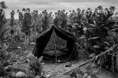 The home of Antonio Escobedo, a tobacco laborer, for the tobacco season. He would sleep, eat and work there for five months.  Photo by César Rodríguez