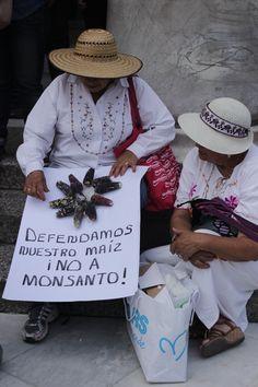 Marcha contra Monsanto, México DF, 2012
