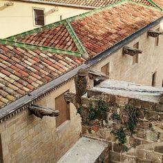 Tunnetuin vedenohjaustapa lienee goottikatedraaleista tutut gargoylit eli veistokselliset vedenheittäjät (tirsk). Tässä näkymä Barcelonan upean 1300-luvulla rakennetun goottikatedraalin katolta. Viereisen rakennuksen gargoyleissa on monenlaisia hahmoja riivatusta siasta käärmeenpäihin ja enkeleihin. Sadevedet ohjautuvat katolta kokoojaränniin josta ne reikien kautta valuvat voimalla gargoylien läpi ja putoavat pitkälle rakennuksen julkisivusta. Tässä tapauksessa pudotus on useita kymmeniä…