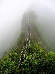 Great view from here >. Haiku Stairs, Oahu