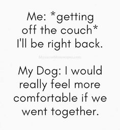 37 Funny Quotes and Sayings That Pack a Punch of Laughter - Page 2 of 2 - ViralAPK.Com dog funny dog funny funny aesthetic funny face funny hilarious funny quotes funny sleeping Funny Quotes, Funny Memes, Hilarious, Funny Dog Sayings, Funniest Memes, Humor Quotes, Top Funny, Little Dogs, Timmy Time