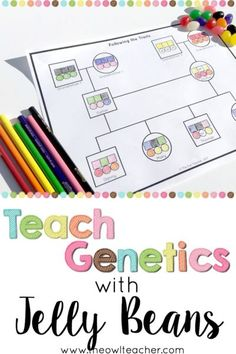 Teach Genetics with Jelly Beans Teach your students about traits being passed down from parents to their offspring (or basic genetics) with this fun, life science demonstration using jelly beans! Grab a freebie to get started and engage your students! Biology Classroom, Biology Teacher, Science Biology, Teaching Biology, Science Education, Life Science, Computer Science, Science Labs, Ap Biology
