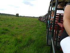 @veenpark in de trein naar het veen gebied. #kuberen vinden de trein alleen al super